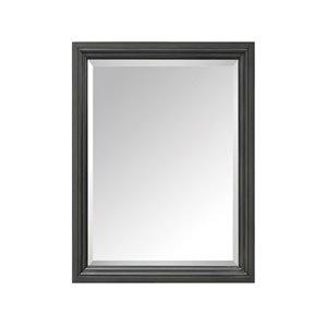 Miroir pour salle de bain Thompson de Avanity, 24