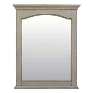 Foremost Corsicana Antique 24-in Grey Bathroom Mirror