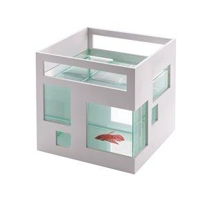 Fishbowl  - 7.5