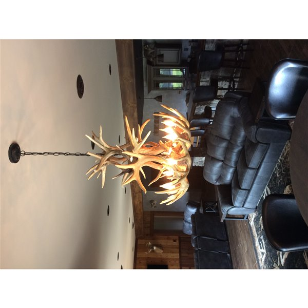 Chandelier Whitetail, 8 lumières, brun