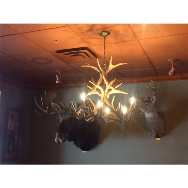 Canadian Antler Designs Reproduction Brown 9-Light Whitetail Antler Chandelier