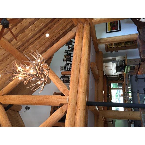 Chandelier en faux bois de cerf mulet, 12 lumières, blanc