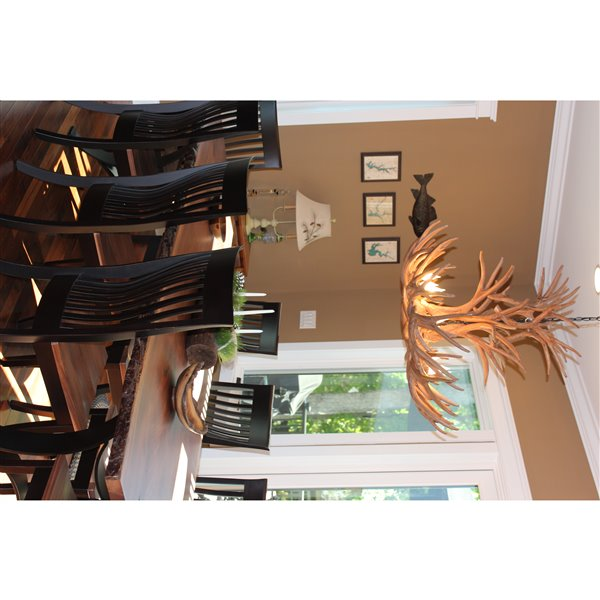Chandelier en faux bois de cerf mulet, 8 lumières, brun