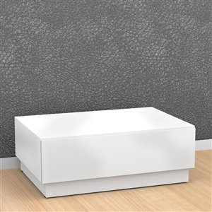 Nexera Blvd 25- in x 35.75-in x 13.38-in Wood In Matte White Lacquer Finish Rectangular Enclosed Storage Coffee Table