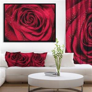 Toile imprimée encadrée, pétales de rose rouge, 32