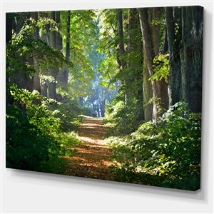 Designart Canada Forest Morning Print on Canvas 30-in x 40-in