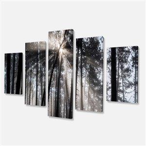 """Rayons de soleil dans la forêt, noir/blanc, 32""""x60""""-5 pièces"""