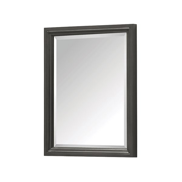 Avanity Thompson 24-in Charcoal Bathroom Mirror