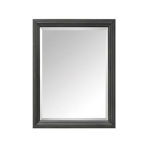 """Miroir pour salle de bain Thompson de Avanity, 24"""", charbon"""