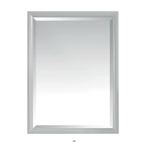 Avanity Emma 24-in Grey Bathroom Mirror