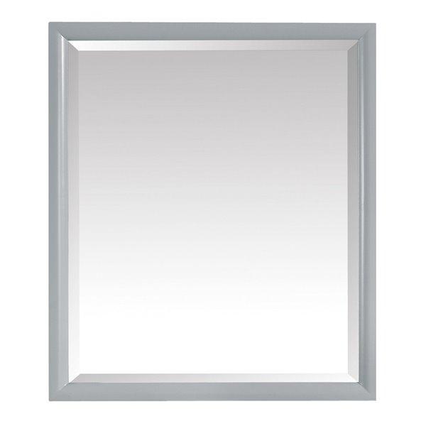 Avanity Emma 28-in Grey Bathroom Mirror