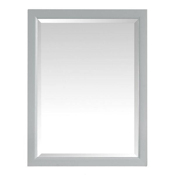 Avanity Emma 22-in Grey Bathroom Mirror Cabinet