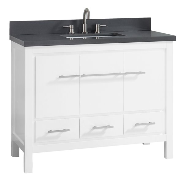 Brilliant Riley 43 In Single Sink White Bathroom Vanity With Quartz Top Download Free Architecture Designs Pushbritishbridgeorg