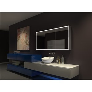 Paris Mirror  60-in x 28-in LED Lighting Medicine Cabinet