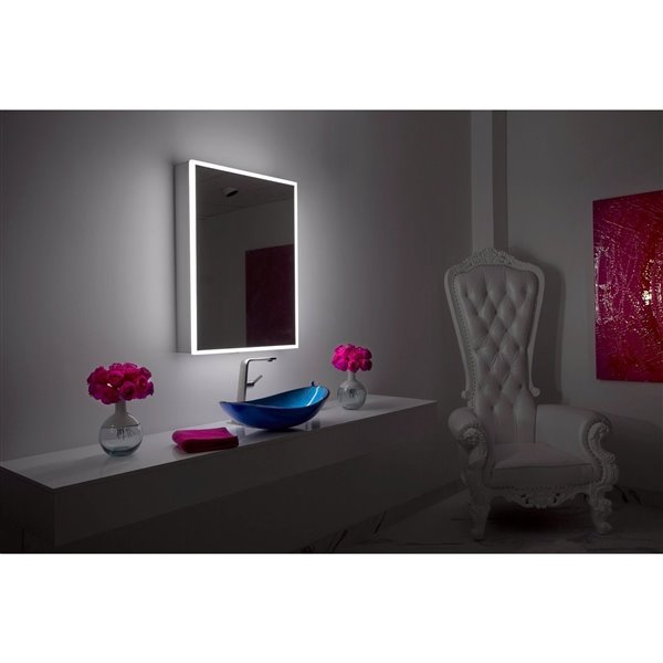 Paris Mirror 24-in x 32-in LED Lighting Medicine Cabinet