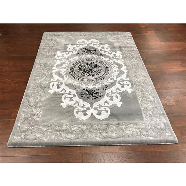 Segma Sierra 8-ft x 11-ft Grey Area Rug