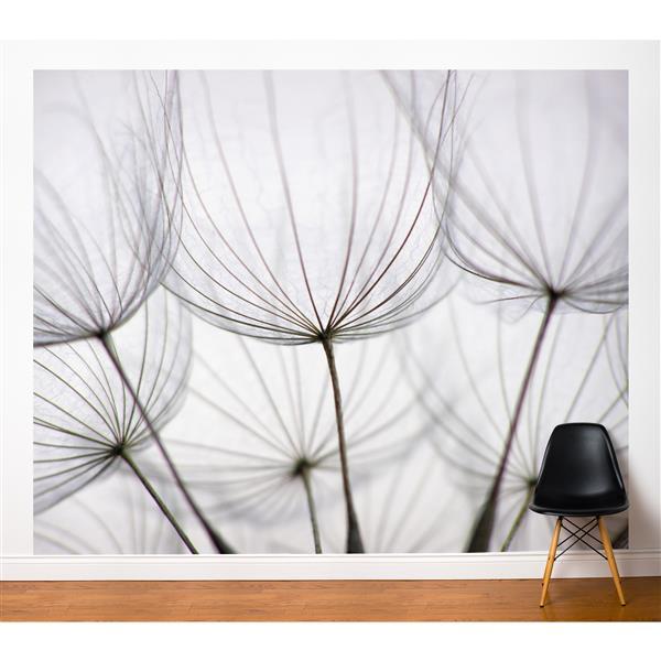 Papier peint adhésif, pissenlits, 10' x 8', blanc