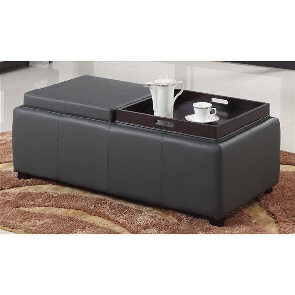 Worldwide Home Furnishings 46.75-in x 23-in x 19.75-in Grey Double Tray Storage Ottoman