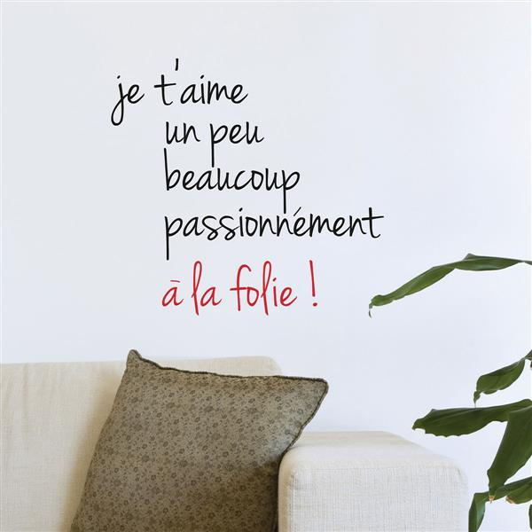 "ADzif Text Wall Decal - ""Amour fou"" - 1.6' x 1.8'"