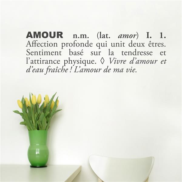 "ADzif Text Wall Decal - ""Amour"" - 2.5' x 0.8'"