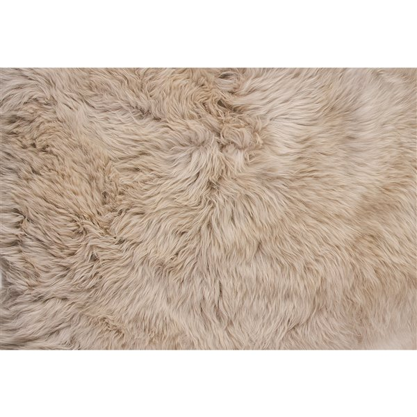 Natural by Lifestyle Brands 4-ft x 6-ft Taupe New Zealand Quattro Sheepskin Rug