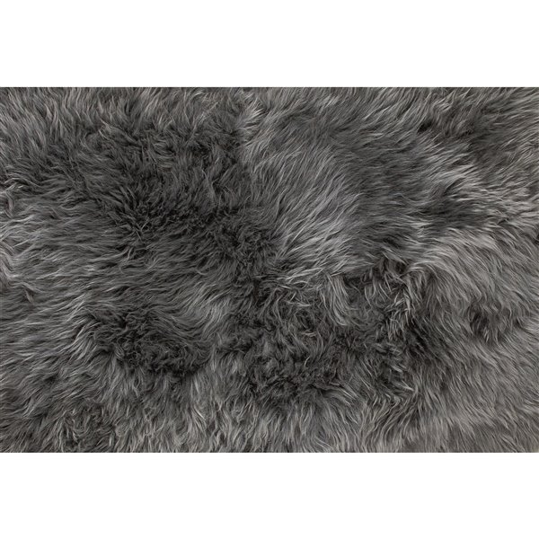 Natural by Lifestyle Brands 4-ft x 6-ft Grey New Zealand Quattro Sheepskin Rug