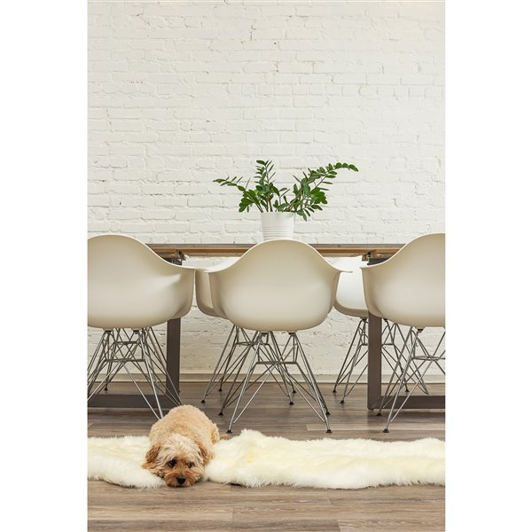 Natural by Lifestyle Brands 2-ft x 6-ft Natural New Zealand Double Sheepskin Rug