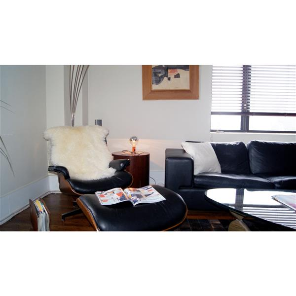 Natural by Lifestyle Brands 2-ft x 3-ft Natural New Zealand Curly Single Sheepskin Rug