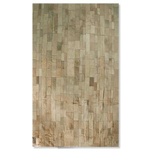 Natural by Lifestyle Brands 5-ft x 8-ft Tan Madrid Cowhide Stitched Rug