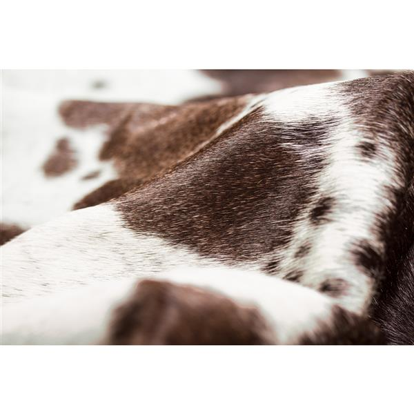 Natural by Lifestyle Brands 6-ft x 7-ft Brown and White Kobe Cowhide Area Rug