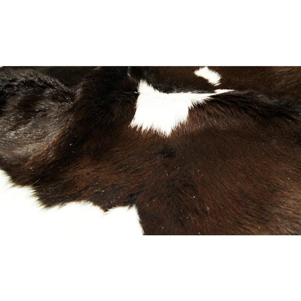 Natural by Lifestyle Brands Mini Hide 2-ft x 3-ft Chocolate & White Calfskin Area Rug