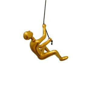 Grimpeur suspendue, or