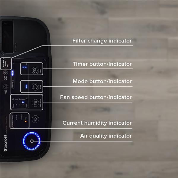 """Purificateur d'air humidificateur O2+ Revive, 12,5"""", noir"""