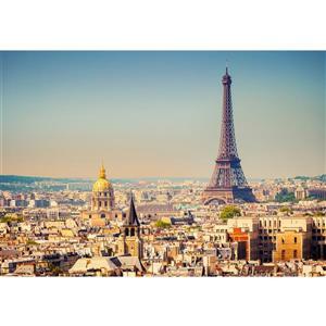 """Papier peint de Paris, 100"""" x 144"""""""