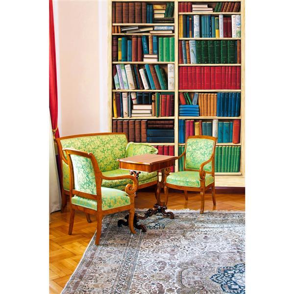 """Papier peint bibliothèque, 100"""" x 72"""""""