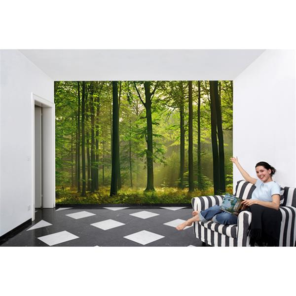 """Papier peint forêt d'automne, 100"""" x 144"""""""