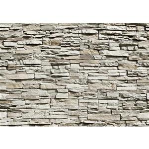 The Wall Mural Stone- 100