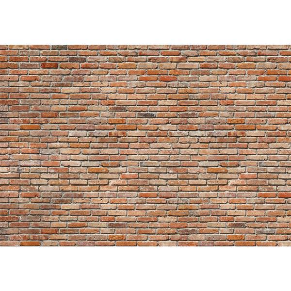 """Papier peint de briques, 100"""" x 145"""""""