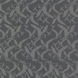 """Papier Peint Lari oiseau, 20,5"""", gris"""
