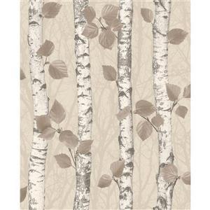 """Papier peint bois de bouleau, 20,5"""", gris"""