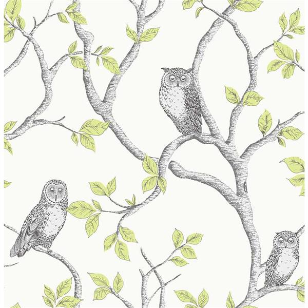Brewster Wallcovering Green/Green Linden Owl Wallpaper 20.5-in