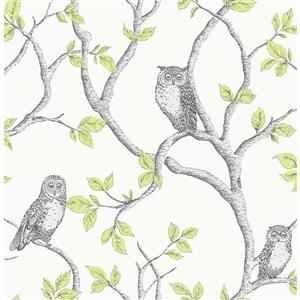 Brewster Wallcovering Green/Green Linden Owl Wallpaper 20.5-in