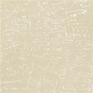 Papier peint équation, 20,5