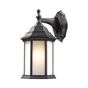 Z-Lite Waterdown 12-in Black Seeded Hexagon Outdoor Wall Sconce