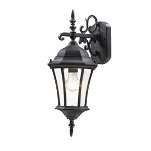 Z-Lite Wakefield 21.75-in Small Black Outdoor Wall Sconce