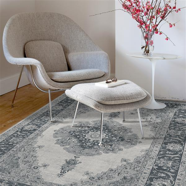 Ruggable Parisa 5-ft x 7-ft Grey Indoor/Outdoor Area Rug