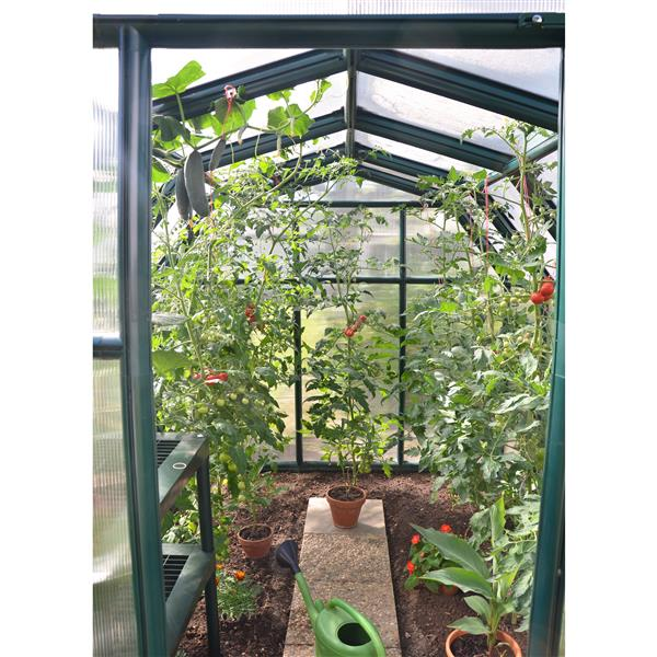 Rion Green Plastic 6-ft x 8-ft Polycarbonate EcoGrow Greenhouse