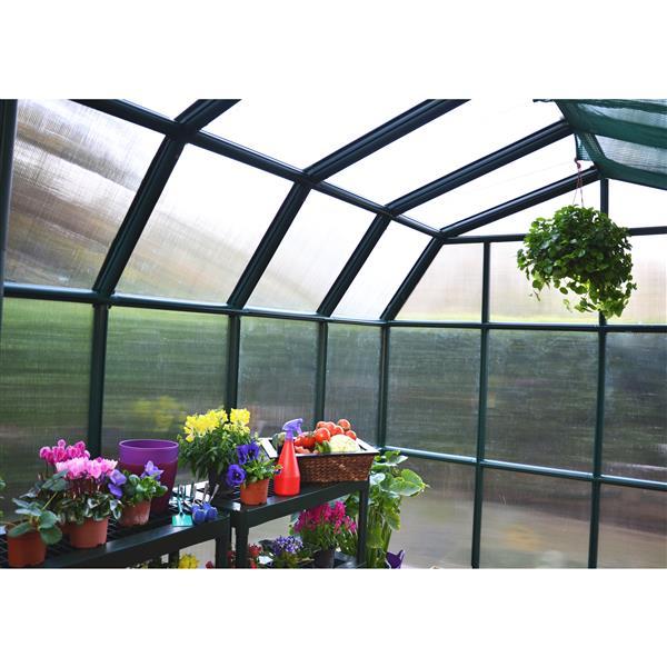 Rion Prestige Green 8-ft x 8-ft Plastic Polycarbonate Greenhouse