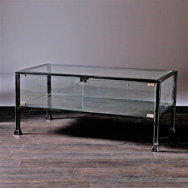 Boston Loft Furnishings Veritas 21-in x 42.5-in x 18.5-in Black Frame And Clear Glass Top Terrarium Style Coffee Table