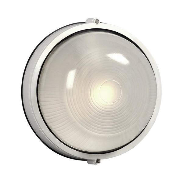 Galaxy Marine 10.25-in White Frosted Glass Outdoor Wall Light